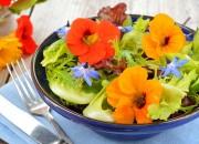 Leichter Sommersalat mit essbaren Blüten