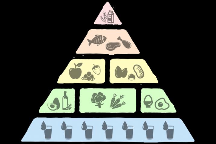 Die Low Carb Ernahrungspyramide Fur Die Low Carb Diat