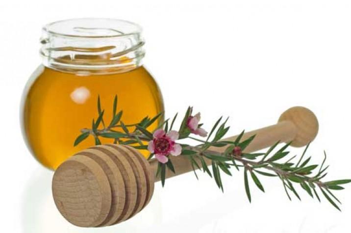 Manuka-Honig - Alle Geheimnisse über das Naturwunder