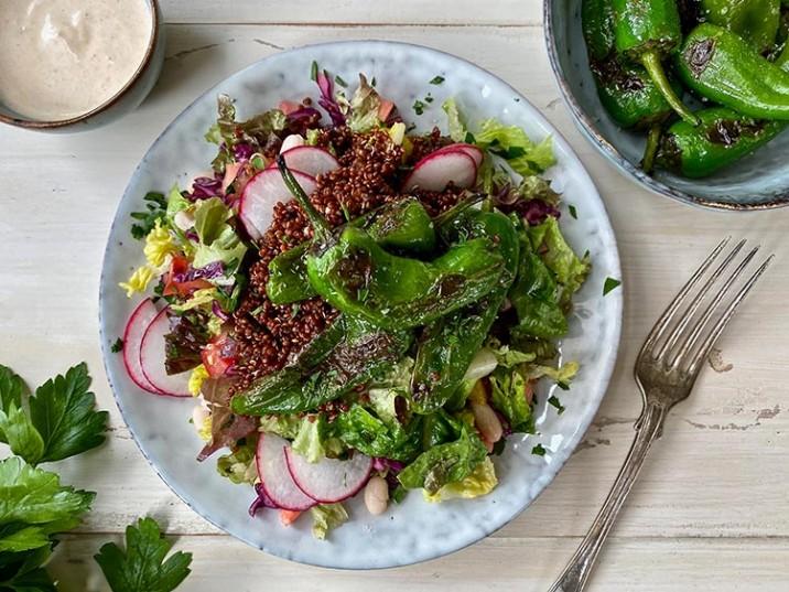 Salat mit Rotkohl, Radieschen und gebratenen Pimientos de Padrón
