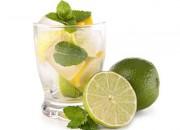 Soda mit Limetten & Zitronen an Minze