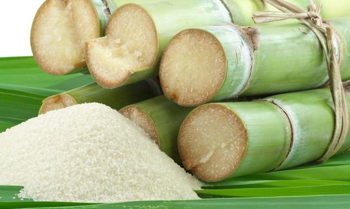 Zucker - Warum hat Zucker so eine Anziehungskraft auf uns?